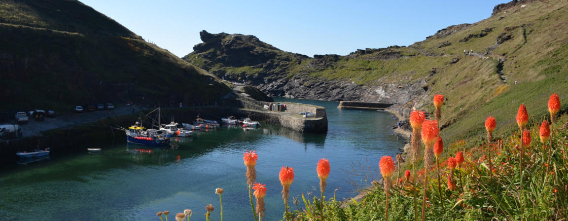 Boscastle and Harbour