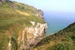 Bossiney Beach with Elephant rock in the foreground....Pics courtesy of Bossiney House Hotel