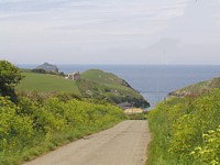 Road to Port Quin
