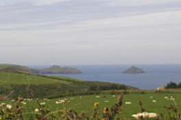 View towards Pentire Point