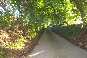The backlanes of St Breward parish........